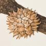 Galla di Andricus hartigi
